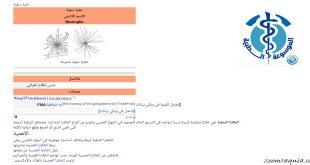 تطبيق ويكيبيديا الطبية بلا إنترنت هو تطبيق طبي مفيد للغاية